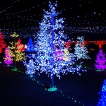 よみうりランド クリスマス ジュエルミネーション2014 期間と混雑状況は?