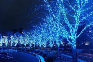 Illuminated Tokyo Midtown