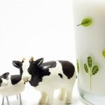 賞味期限切れの牛乳はいつまで平気?その他の使い道や美容効果をお伝えします