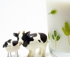 賞味期限切れ牛乳