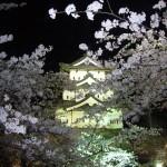 弘前公園の桜2015の見所と見頃、弘前さくら祭り情報、混雑時の駐車場とおすすめホテル