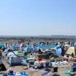 潮干狩り情報千葉 2016!ふなばし三番瀬海浜公園を紹介