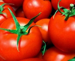 トマトの効果効能