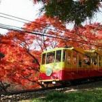 高尾山の紅葉見ごろの時期は?混雑状況やおすすめコース、温泉情報を紹介!
